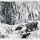 Cascade III -Fall by Richard Sunderland