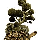 A Turtle Transporting Topiary by RichardSmith