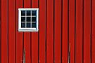 Red Barn Wall by cclaude