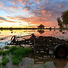 Floodplain Sunrise by David Haworth