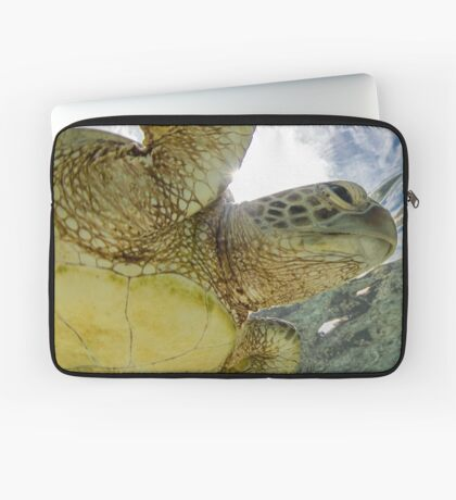 Hopeful turtle - print Laptop Sleeve
