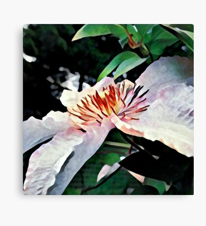 Purple flower filtered Canvas Print