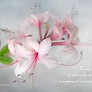 Wild Azaleas in Spring Greeting Card with Quote by LouiseK
