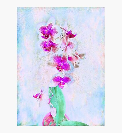 At Last Orchid Abstract Photographic Print