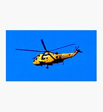 SEAKING RESCUE Photographic Print