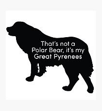 That's Not a Polar Bear it's my Great Pyrenees Photographic Print