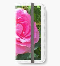 Blush Pink Rose iPhone Wallet/Case/Skin
