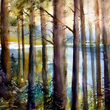 Pine Forest Near the Lake by mishakuz