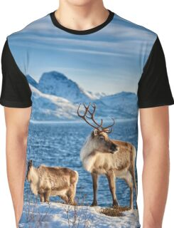 Reindeer in snow covered landscape at sea Graphic T-Shirt