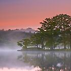 Misty Morning Hues by Jeanie