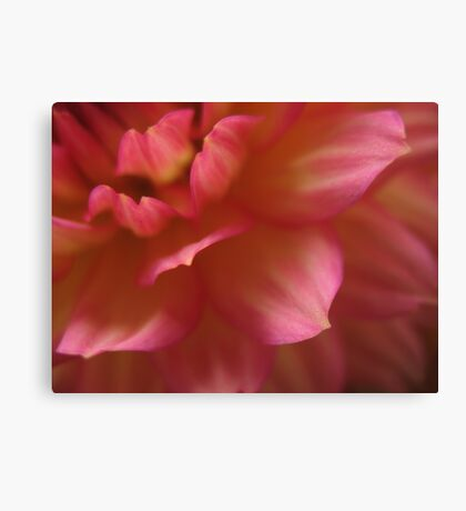 Layered petals Canvas Print