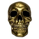 Gold Skull by giovonni808
