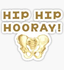 Hip Bone Pun  Sticker