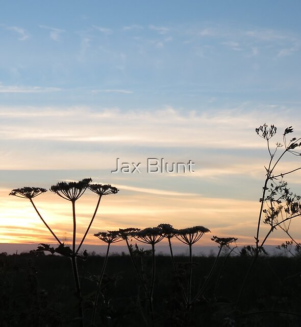 Suffolk sunset by Jax Blunt