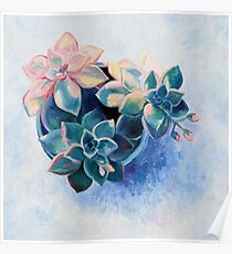 Pastel Succulents - an oil painting on canvas Poster