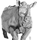 African Rhino by BruksSketches