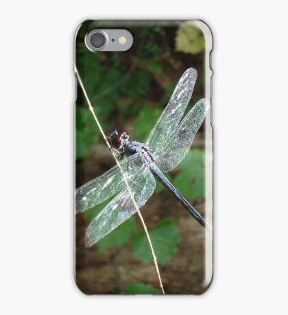 SLATY DRAGONFLY ON SILVER WINGS iPhone Case/Skin