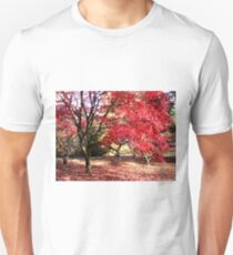 Japanese Maples in Autumn Unisex T-Shirt