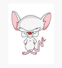 Pinky and The Brain - Brain Photographic Print