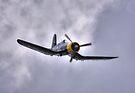 KD345 Corsair by Nigel Bangert