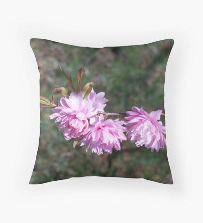 Welcoming Spring - Flowering Almond 2 Throw Pillow