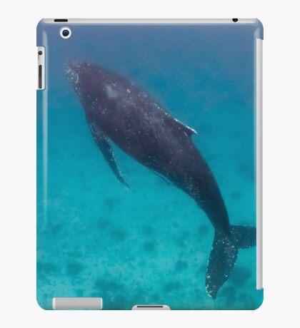 Whale wonders - print iPad Case/Skin