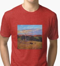 Bendemeer Pastoral Tri-blend T-Shirt