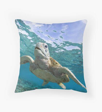 Turtle grin Throw Pillow