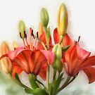 Uplifting by Lois  Bryan