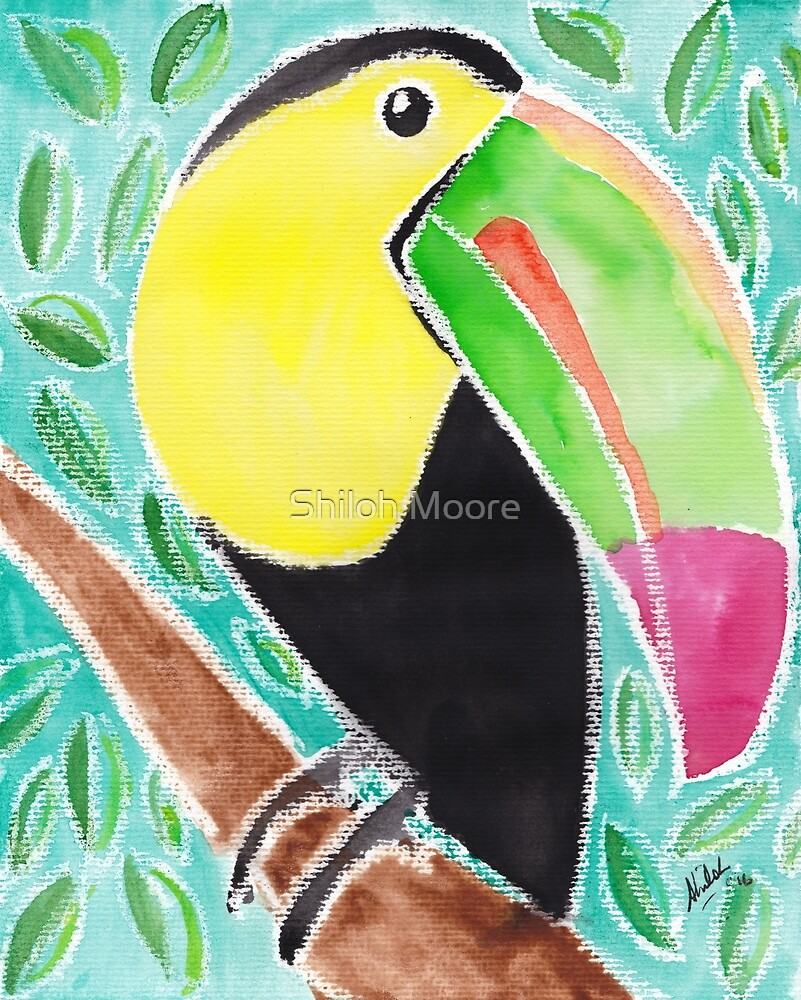 Tropical Toucan by Shiloh Moore
