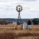 Windmill - Premer NSW Australia by Bev Woodman