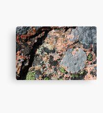 Acadia Granite 11 Canvas Print