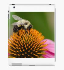 Bee 4 iPad Case/Skin