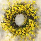 Forsythia Wreath by Lois  Bryan