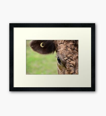 Aye, I see you Framed Print