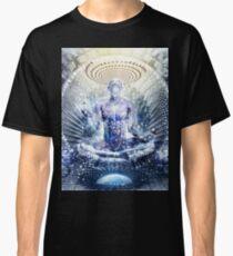 Awake Could Be So Beautiful, 2011 Classic T-Shirt