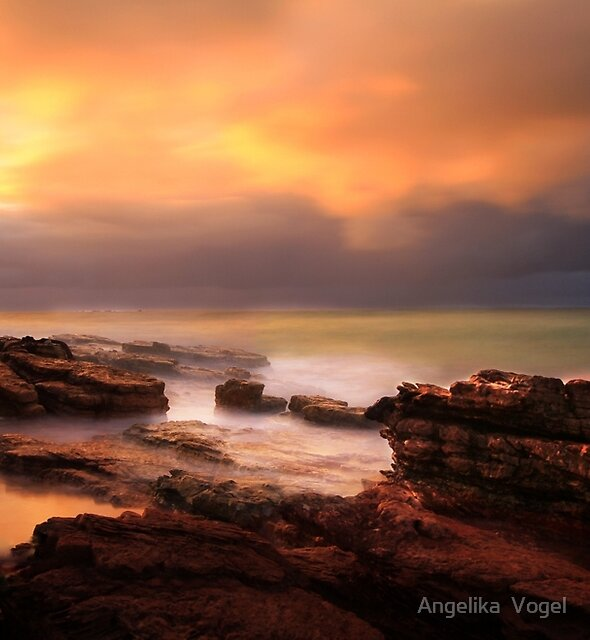 North West Tasmania by Angelika  Vogel