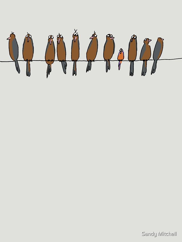 birds on wire by sandymitchell