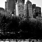 Ice Skating in Central Park by Leanne Kelly