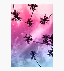 Miami Palms Photographic Print