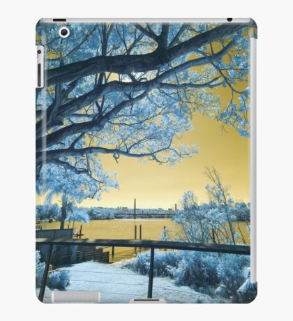 The Fig Tree and the Eleanor Schonell Bridge iPad Case/Skin