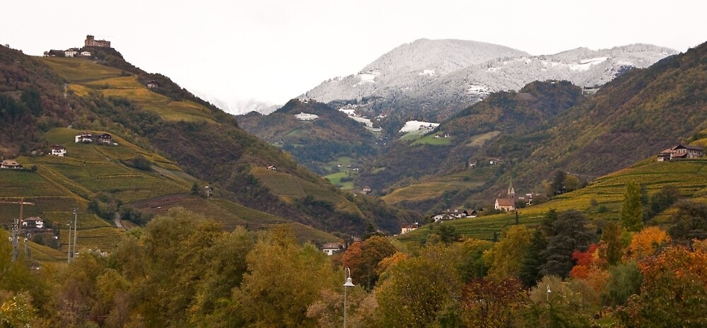Snow line on the hills, Bolzano/Bozen, Italy (Panorama) by L Lee McIntyre
