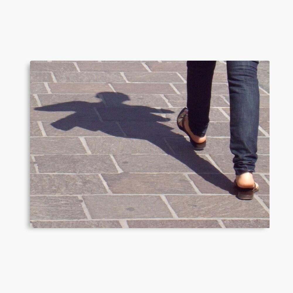 Winged shadow, Bolzano/Bozen, Italy Canvas Print