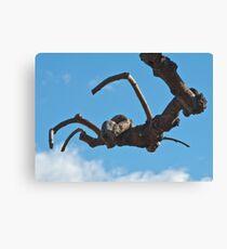 """""""Spider"""", Bolzano/Bozen, Italy Canvas Print"""