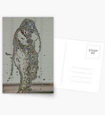 Water Snake, Bolzano/Bozen, Italy Postcards
