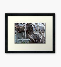 Animal Head in Tree Branch, Bolzano/Bozen, Italy Framed Print