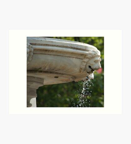 LIon Head Fountain, Piazza Walther, Bolzano/Bozen, Italy Art Print