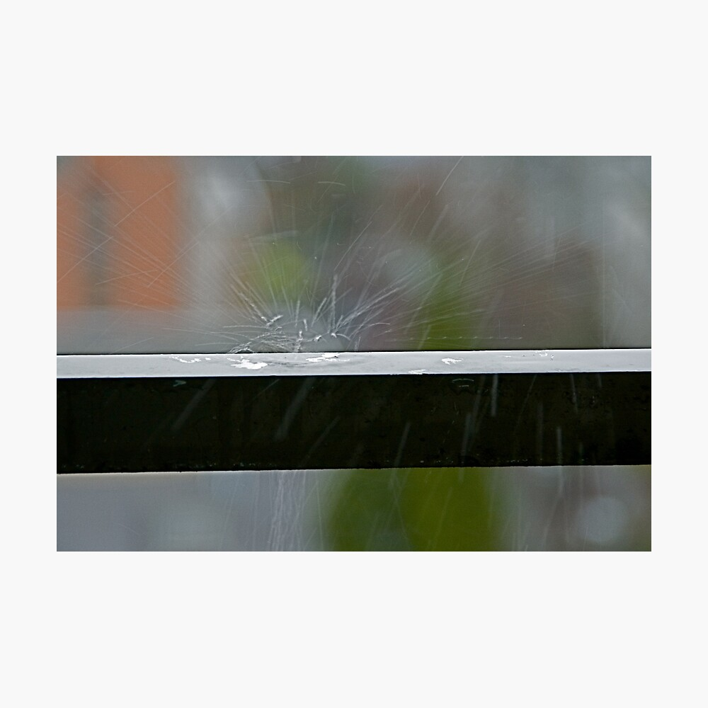 Sudden Splash, Vancouver, British Columbia Photographic Print