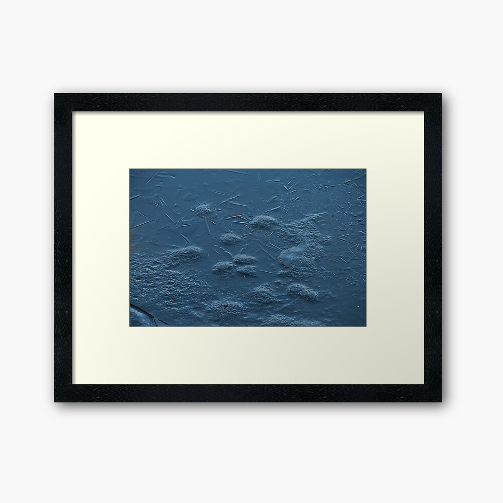 Ice on Lost Lagoon, Vancouver, British Columbia Framed Print