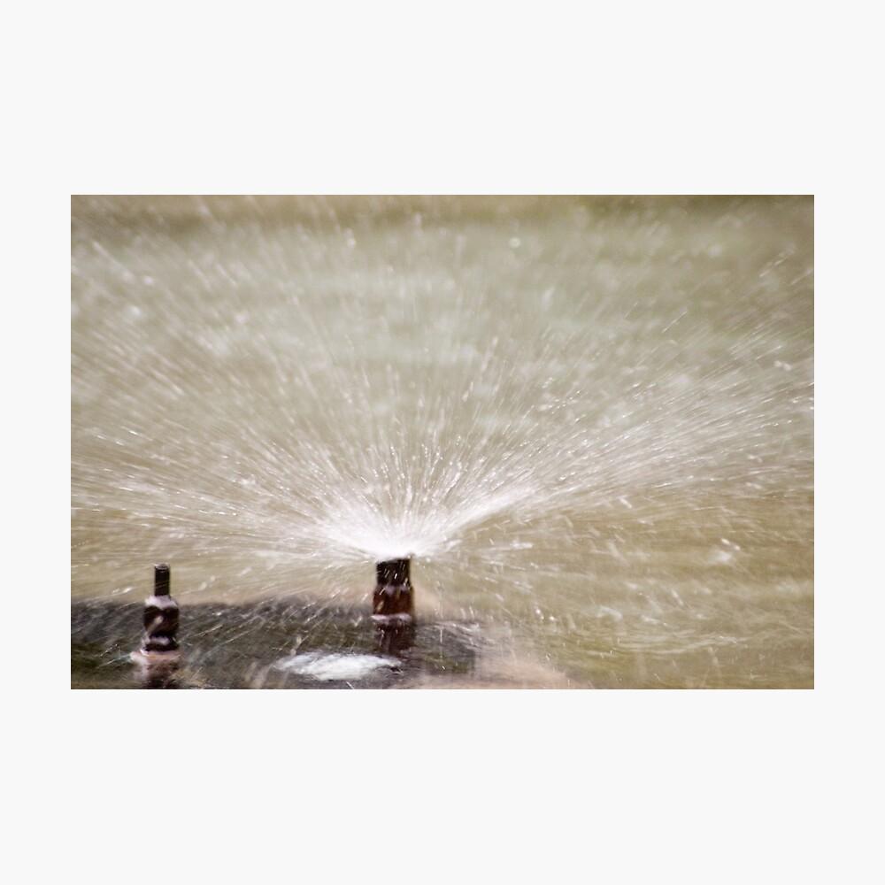 Sprinkler Spray, Vancouver, British Columbia Photographic Print